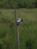 Potter Marsh birdhouse
